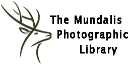 The Mundalis Photo Library - The Hartland Old Racecar Photo Library